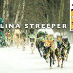 lina-streeper-2017pedigree