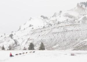 Teton County web-160